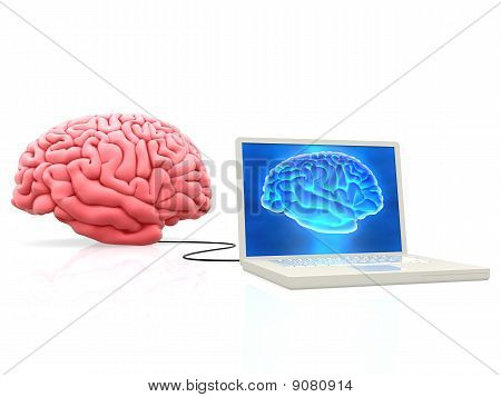 Brain Connected To A Laptop