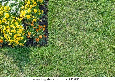 Flower Bed With Orange, Yellow & White Flowers Surrounded By Green Lawn