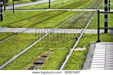 Safe Crossing, Rails , Transportation