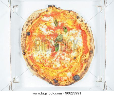 Margherita Pizza Carton