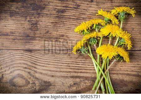 Dandelions on brown wood texture