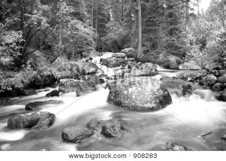 Black & White Water