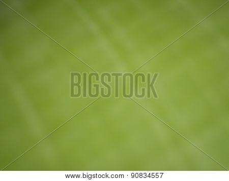 bokeh banana leaf