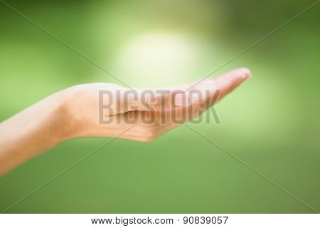 Empty Human Hand With Palms Up