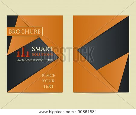 Smart solutions Brochure and flyer a4 size design template with management Consulting keywords conce