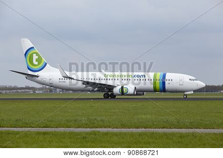 Amsterdam Airport Schiphol - Boeing 737 Of Transavia Lands