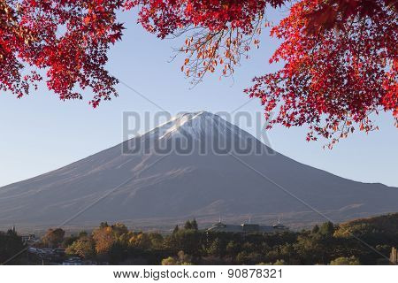 Maple Leaves Change To Autumn Color At Mt.fuji, Japan