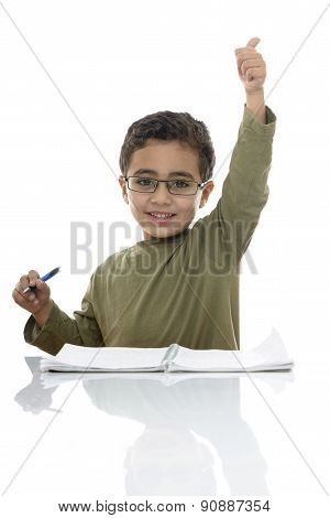 Happy Young Schoolboy Studying