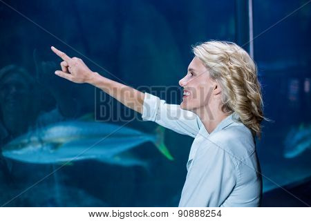 Pretty blonde pointing a fish tank at the aquarium