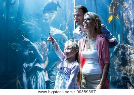 Daughter pointing a fish while her mother and father looking at fish tank