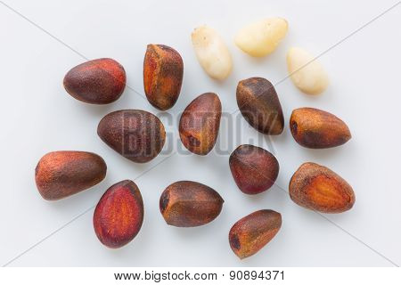 Isolated pine (cedar) nuts on a white background close up