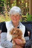 stock photo of dachshund dog  - Smiling senior lady age 75 - JPG