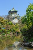 pic of castle  - Osaka castle or Himeji Castle with Japanese style garden - JPG