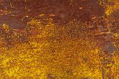 foto of goldenrod  - rusty iron surface covered with old paint - JPG