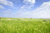 foto of generator  - Landscape of green barley field and wind generator with blue cloudy sky in Gapado Island of Jeju Island in Korea - JPG