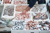 pic of fish  - Various types of fish for sale in the local fish market of Catania - JPG