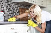 picture of stereotype  - Pretty housewife finished cleaning the kitchen in her house  - JPG