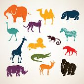 stock photo of african animals  - african animals icons - JPG