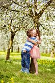foto of orchard  - The boy hugged girl in a blossoming orchard - JPG