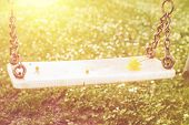 picture of swing  - Abandoned swing in warm sunny light with flowers in the spring season - JPG