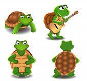 stock photo of animated cartoon  - set of four cartoon turtles - JPG