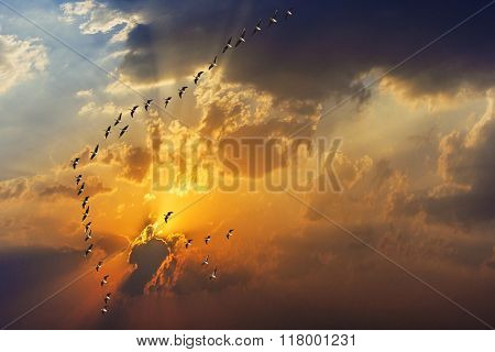 Spectacular Golden Sunset With Clouds