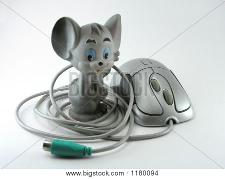 Species Of Mouses