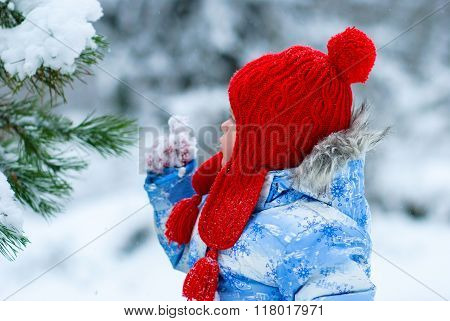 Girl In In Red Knitted Hat, Mittens And Blue Jacket Walking In The Winter Near The Tree.she Held Up