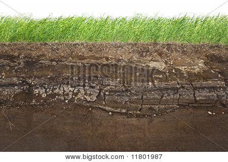 Hierba y capas de suelo aisladas en blanco