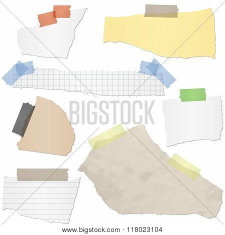 Collection Scrap Of Paper
