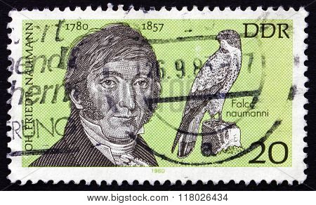Postage Stamp Germany 1980 Johann Friedrich Naumann, Ornithologist