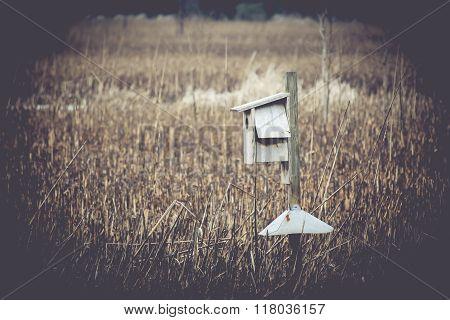 Birdhouse in Marsh