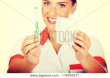 Young dentist woman with toothbrush and tooth model