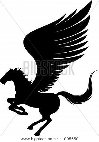 Flying Pegasus