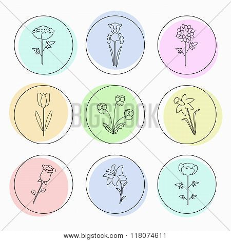 Modern vector line icons with different kind of garden flowers