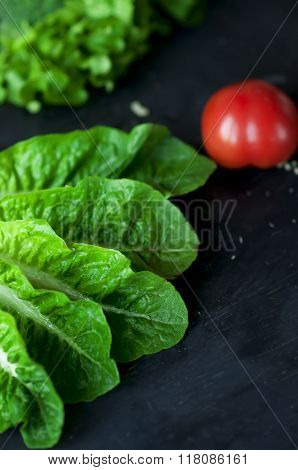 Fresh Green Cos Lettuce On Dark Background.