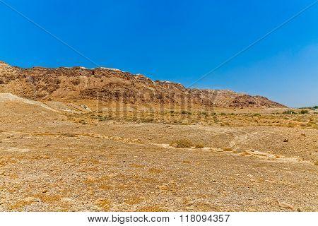 Israel sandstone desert landscape