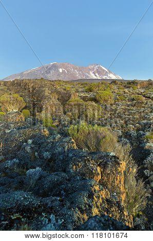 Sunset on Kilimanjaro