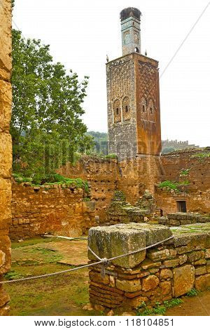 Chellah  In        Africa The Old Roman Deteriorated      And Site