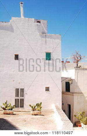 Ostuni The White Town Of Murgia In Puglia - Italy 647