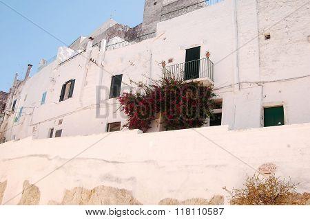 Ostuni The White Town Of Murgia In Puglia - Italy 677