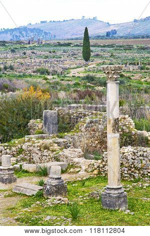 Volubilis In Morocco   Site