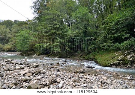 View Of The River Hosta, Sochi, Russia