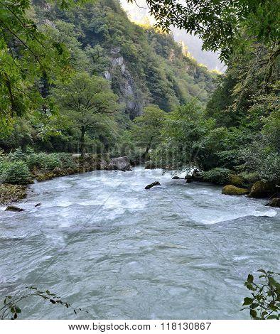 View Of The Mountain River Yupshera Abkhazia
