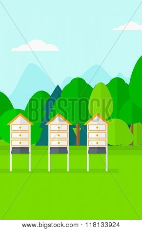 Background of beehives in meadow.