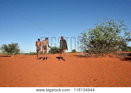 Bushmen Hunters, Kalahari Desert, Namibia