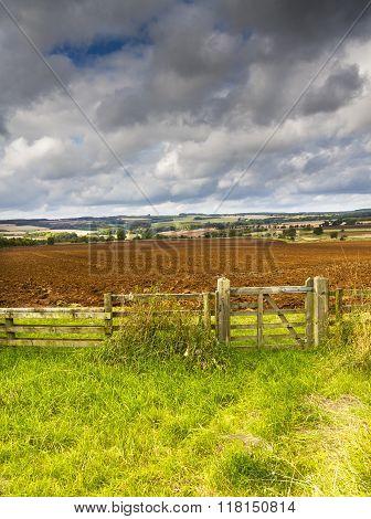 Cotswold Landscape, Gloucestershire, England
