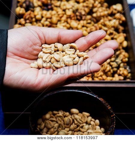Coffee beans from the civet on hand.