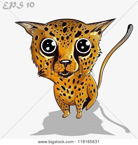 kids leopard