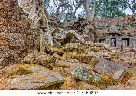 Angkor Wat Cambodia. Ta Prohm Khmer ancient Buddhist temple.